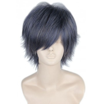 PERRUQUE COSPLAY GRIS